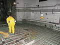 P Reactor (7448028716).jpg