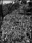 Palmer's Mystery Hike No. 4 (3817247916).jpg