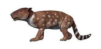 Pantodonta - Image: Pantolambda NT copy