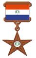 Paraguay TT Barnstar.png