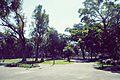 ParqueDeLosPatricios-2.jpg