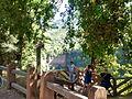 Parque Nacional Radal Siete Tazas (16).jpg