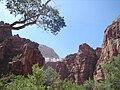 Parque Nacional Zion, Utah.jpg
