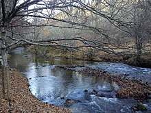 de que rio es afluente el jarama