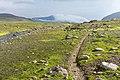 Path, taken from Víknaslóðir Trail in Eastern fjords, Iceland 05.jpg