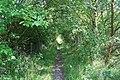 Path Near Pye Hill - geograph.org.uk - 898978.jpg