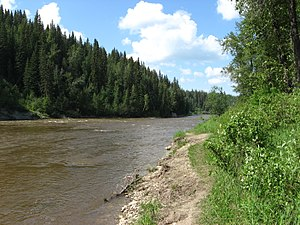 Pembina River (Alberta) - The Pembina River