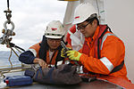 Personnel conduct maintenance of the Dragon Prince deep tow fish on the back deck of Fugro Discovery.jpg