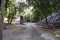 Petén Campechano, Calakmul, Campeche (22199409085).jpg