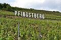 Pfingstberg1.JPG