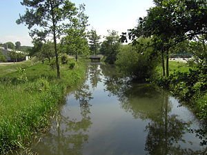 Tributary - The Pfinz, a right tributary of the Rhine, located in Baden-Württemberg.