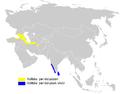 Phylloscopus nitidus distribution map.png