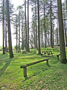 Picnic area by Blakeshall car park, Kingsford Forest Park - geograph.org.uk - 886463
