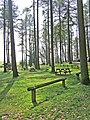 Picnic area by Blakeshall car park, Kingsford Forest Park - geograph.org.uk - 886463.jpg