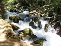PikiWiki Israel 14681 Banias (Hermon) river.JPG