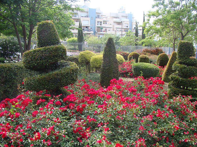 הפארק מול עיריית כרמיאל