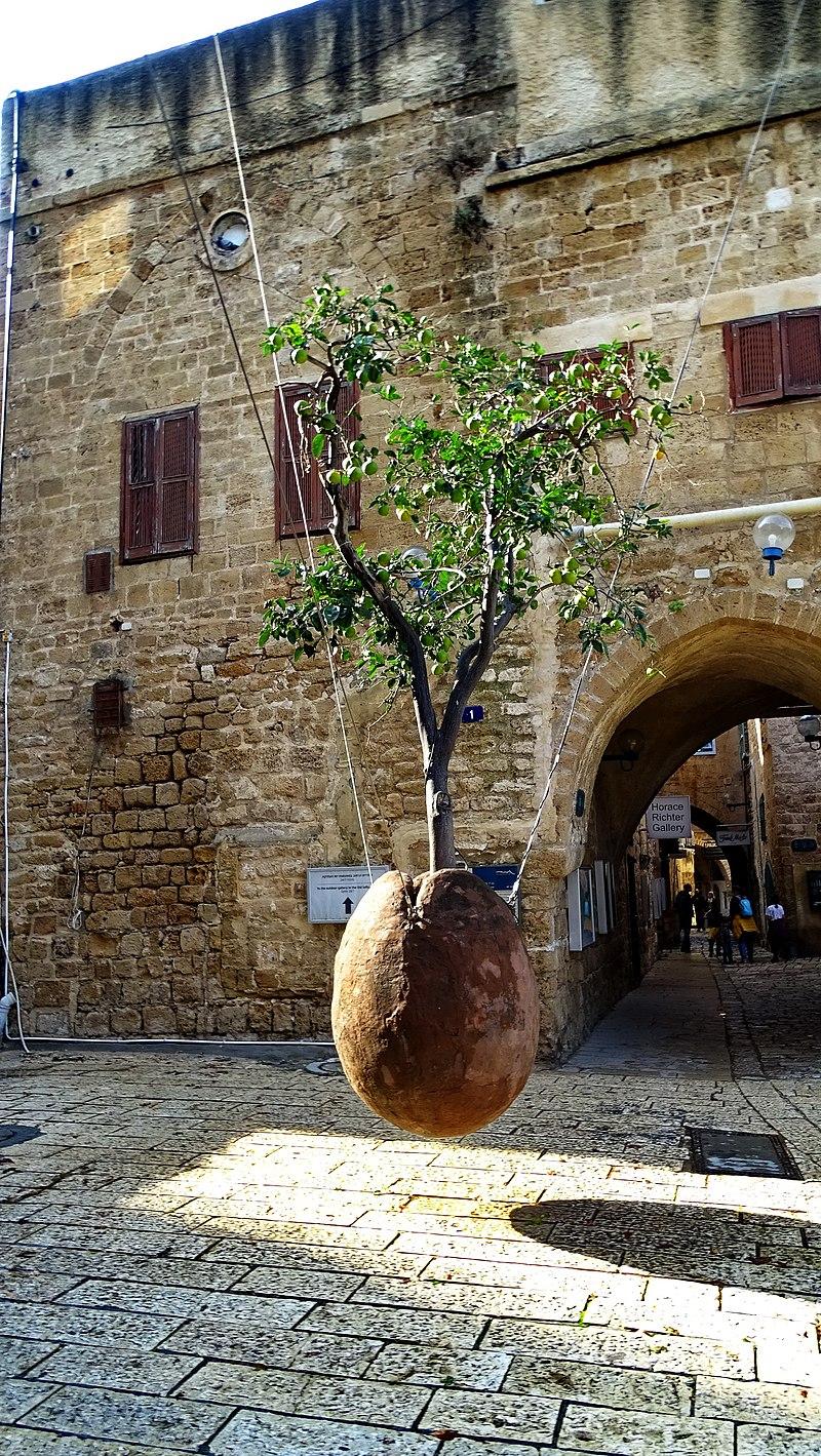 פסל עץ תפוז מרחף