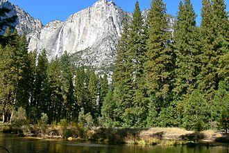 Ecology of the Sierra Nevada - Yosemite Valley is in the Lower Montane Forest.