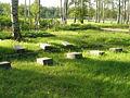 Piskarevskoye Memorial Cemetery individual graves 1940.jpg