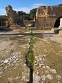 Pius-Antoninus-Thermen, Karthago Tunesien Januar 2015 10.JPG