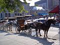Place Jacques-Cartier 066.JPG