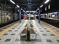 Platform of Miyazaki Station at night.jpg