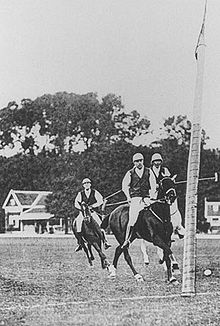 Polo - Wikipedia, the free encyclopedia