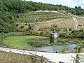 Pond by The Eden Project - geograph.org.uk - 230306.jpg