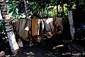 Poniendo a secar las yaguas (hoja de palmera) para hacer el famoso cucurucho de Baracoa - panoramio.jpg
