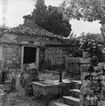 Povir pri Divači 68, del župniščnega vrta 1969.jpg