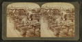Primitive methods of carrying freight and passengers-Transportation Bldg, from Robert N. Dennis collection of stereoscopic views.png