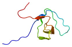 Protein SH3KBP1 PDB 1wi7.png