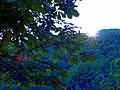 Puesta de sol en Camping Guisando - panoramio.jpg