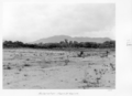 Queensland State Archives 4956 Reclamation Hoare Street Cairns 1953.png