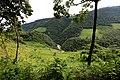 Río Jataté - panoramio (4).jpg