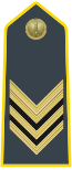 Rank insignia of brigadiere of the Guardia di Finanza.svg