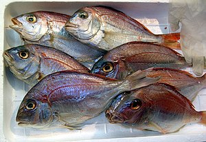 Red seabream - Red sea bream at a fish store in Ueno, Japan