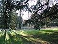 Reggio emilia giardini pubblici winter.jpg