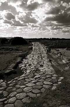 Remains of the Roman Road at Egnazia.jpg