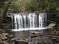 Ricketts Glen State Park Oneida Falls 1.jpg