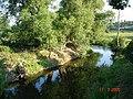River Clwyd - geograph.org.uk - 26209.jpg