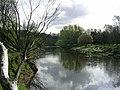 River Irwell, Kersal, Salford - geograph.org.uk - 2999.jpg