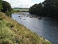 River Tyne near Newbrough - geograph.org.uk - 552102.jpg