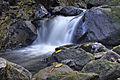 Rivière du Grand Carbet - Flickr - rachel thecat.jpg
