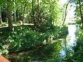 Rivière du Parc de la Tête d'Or.JPG