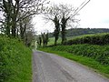 Road at Derryslavan - geograph.org.uk - 169406.jpg