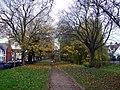 Roath Mill Gardens - geograph.org.uk - 625621.jpg