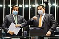 Rodrigo Maia e Davi Alcolumbre utilizando máscara de proteção durante a pandemia de COVID-19.jpg