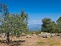 Ruínas Romanas de Cáparra, vista de la Sierra.jpg