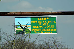 Tanzania National Parks Authority - Ruaha National Park Entrance